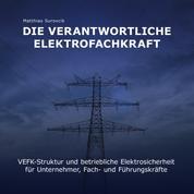 Die Verantwortliche Elektrofachkraft - VEFK-Struktur und Betriebliche Elektrosicherheit für Unternehmer, Fach und Führungskräfte