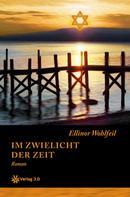 Ellinor Wohlfeil: Im Zwielicht der Zeit (Band 1)