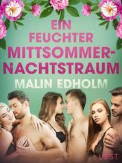 Ein feuchter Mittsommernachtstraum: Erotische Novelle