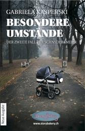 Besondere Umstände - Der zweite Fall für Schnyder&Meier