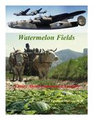 Aurel Emilian Mircea: Watermelon Fields