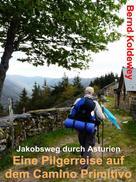 Bernd Koldewey: Eine Pilgerreise auf dem Camino Primitivo