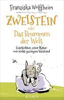 Franziska Wolffheim: Zweistein oder Das Brummen der Welt ★★★★