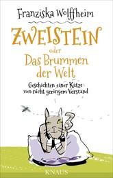 Zweistein oder Das Brummen der Welt - Geschichten einer Katze von nicht geringem Verstand