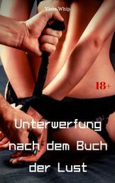 Unterwerfung nach dem Buch der Lust - BDSM Story
