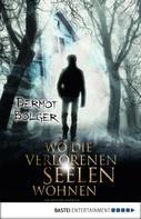Dermot Bolger: Wo die verlorenen Seelen wohnen ★★★★