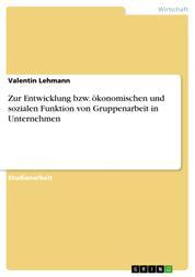 Zur Entwicklung bzw. ökonomischen und sozialen Funktion von Gruppenarbeit in Unternehmen