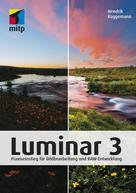 Hendrik Roggemann: Luminar 3