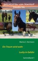 Marina C. Herrmann: Geschichten vom Ponyhof Sonnental ★★★