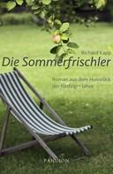 Richard Kapp: Die Sommerfrischler: Roman aus dem Hunsrück der fünfziger Jahre ★★★
