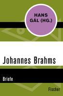 Johannes Brahms: Johannes Brahms