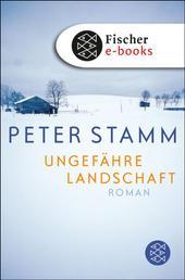 Ungefähre Landschaft - Roman