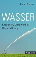 Dieter Gerten: Wasser ★★★★