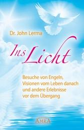Ins Licht - Besuche von Engeln, Visionen vom Leben danach und andere Erlebnisse vor dem Übergang