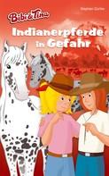 Stephan Gürtler: Bibi & Tina – Indianerpferde in Gefahr ★★★★