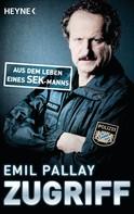 Emil Pallay: Zugriff ★★★★