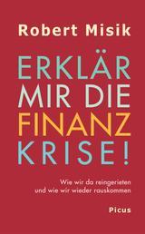 Erklär mir die Finanzkrise! - Wie wir da reingerieten und wie wir wieder rauskommen