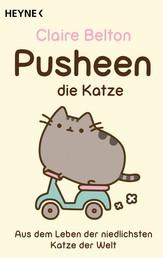 Pusheen, die Katze - Aus dem Leben der niedlichsten Katze der Welt