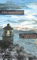 Pablo Andrés Escapa: Mientras nieva sobre el mar