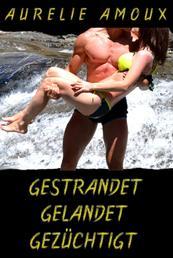 Gestrandet, gelandet, gezüchtigt - Erotisches Abenteuer