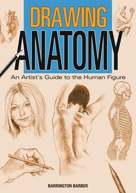 Drawing Anatomy