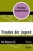 Petru Dumitriu: Die Bojaren (2)