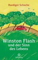 Ruediger Schache: Winston Flash und der Sinn des Lebens ★★★★