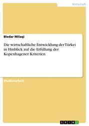 Die wirtschaftliche Entwicklung der Türkei in Hinblick auf die Erfüllung der Kopenhagener Kriterien
