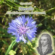 Novalis - Eine Kulturgeschichte der Romantik