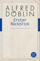 Alfred Döblin: Erster Rückblick