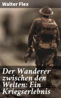 Walter Flex: Der Wanderer zwischen den Welten: Ein Kriegserlebnis