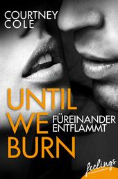 Until We Burn - Füreinander entflammt - Roman
