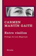 Carmen Martín Gaite: Entre visillos