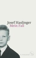 Josef Haslinger: Mein Fall ★★★★★