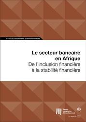 Le secteur bancaire en Afrique: De l'inclusion financière à la stabilité financière