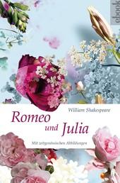 Romeo und Julia (Nikol Classics) - mit Illustrationen