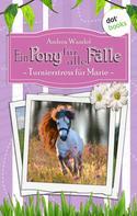Andrea Wandel: Ein Pony für alle Fälle - Dritter Roman: Turnierstress für Marie ★★★★★