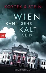 Wien kann sehr kalt sein - Kriminalroman
