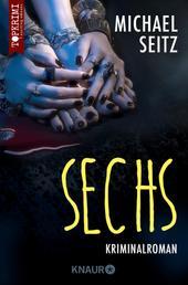 Sechs - Kriminalroman