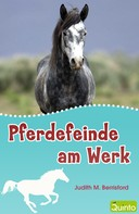 Judith M. Berrisford: Pferdefeinde am Werk ★★★★★