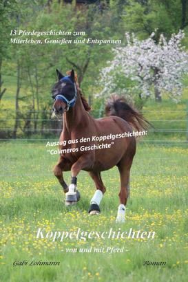 Koppelgeschichten - von und mit Pferd; Calimeros Geschichte