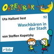 Ohrenbär - eine OHRENBÄR Geschichte, Folge 92: Waschbären in der Stadt (Hörbuch mit Musik)