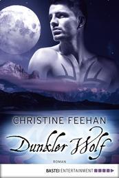 Dunkler Wolf - Roman
