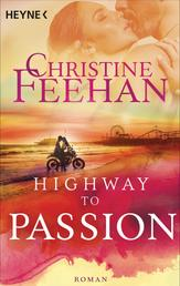 Highway to Passion - Roman