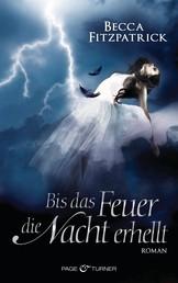 Bis das Feuer die Nacht erhellt - Engel der Nacht 2 - Roman