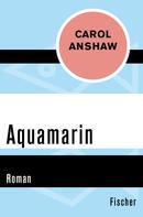 Carol Anshaw: Aquamarin