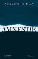 Aravind Adiga: Amnestie ★★★