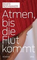 Beate Rothmaier: Atmen, bis die Flut kommt ★★★★