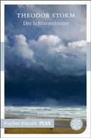 Theodor Storm: Der Schimmelreiter ★★★★