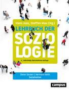Hans Joas: Sozialisation